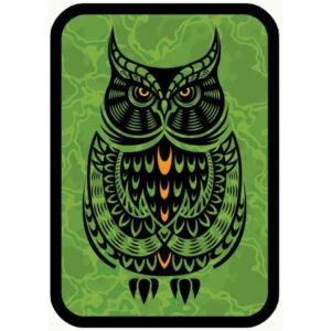 OWL MULTI 1